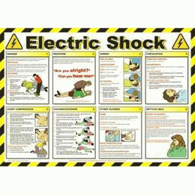Electric Shock Wallchart (420 x 590mm)