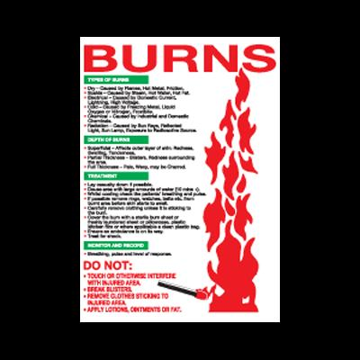 Burns Wallchart - 600mm x 420mm